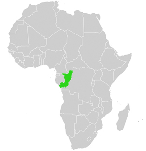 Republik Kongo Lage in Afrika