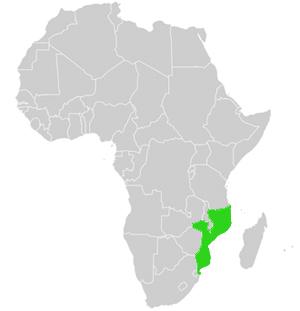 Mosambik Karte.Mosambik Detaillierte Karte Und Allgemeine Landes Geographie