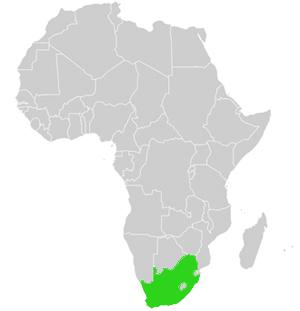 Südafrika Karte.S Dafrika Genaue Karte Und Geographie Des Landes