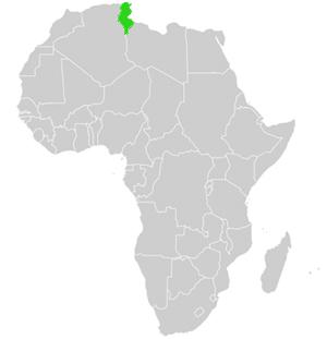 Tunesien Karte.Karte Und Geographie Von Tunesien