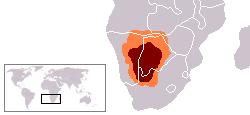 Kalahari Afrika