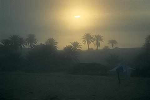 http://www.transafrika.org/media/Mauretanien/Oase.jpg