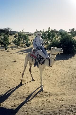 http://www.transafrika.org/media/Niger/tuareg-niger.jpg