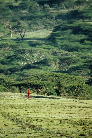Safaris Reisen Afrika