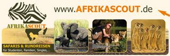 africascout südafrika reisen