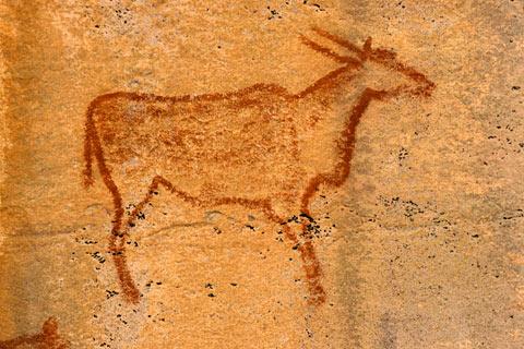 http://www.transafrika.org/media/botswana/felsbild-botswana-1.jpg