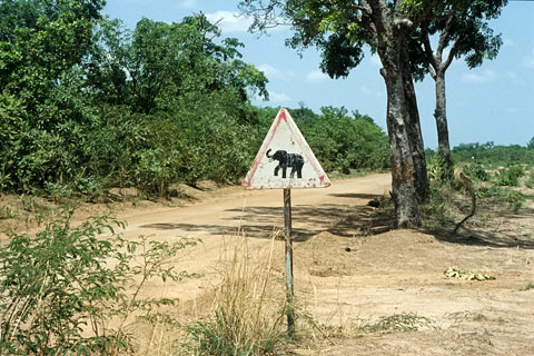 Nationalpark Ghana