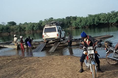 Regenwald Guinea Afrika Bilder