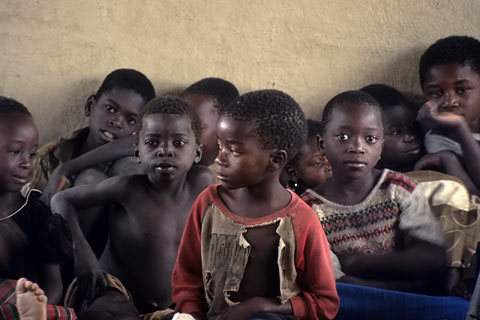 http://www.transafrika.org/media/malawi/kinder-malawi.jpg