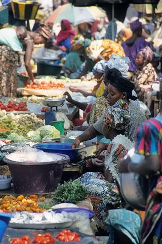 http://www.transafrika.org/media/mali/markt-mali.jpg