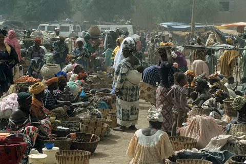 http://www.transafrika.org/media/mali/montagsmarkt-djenne-mali-2.jpg