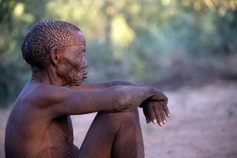 http://www.transafrika.org/media/namibia/bushmen-namibia.jpg