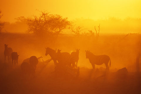 http://www.transafrika.org/media/namibia/sonnenuntergang-namibia.jpg