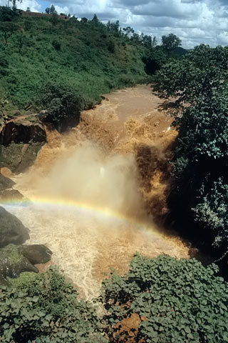 http://www.transafrika.org/media/ruanda/wasserfall-regenwald.jpg
